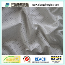 11X1 FDY Eyelet Mesh Fabric
