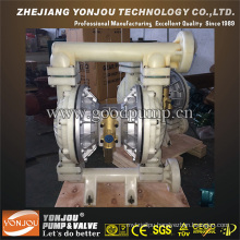 Double Diaphragm Pump PVDF Anti Corrosion