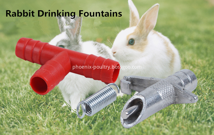 RABBIT DRINKING SYSTEM