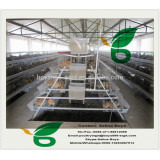 2016 new design A and H type galvanized layer chicken cage for sale