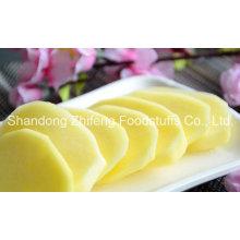 China Shandong Fresh Potato