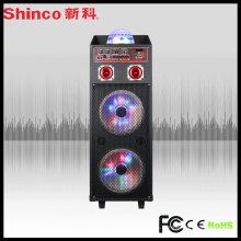 Altavoz de audio PRO Subwoofer PA Bass para rendimiento