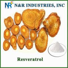 N & R vente chaude resveratrol en poudre / usine de resveratrol vendre / resveratrol