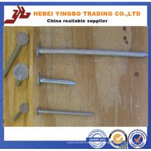 Polierte gemeinsame Nägel / Common Iron Nail / Common Wire Nail