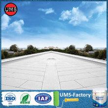 Waterproofing membrane paint for roof deck