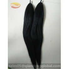 False Horse Tails voor Decoratie