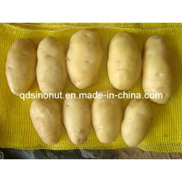 Pomme de terre chinoise (100 g)