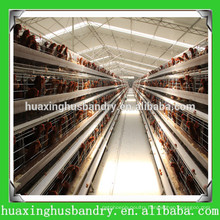 bird trap cage poultry farm with automatic nipple drinkers