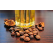 Cooking Oil: Camellia Oil- Pure, Organic, Cosmetics Raw Material