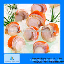 High quality frozen seafood scallop