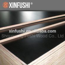 film faced plywood poplar core wbp glue