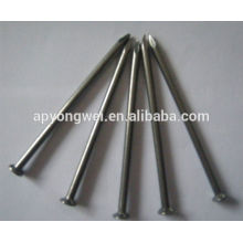 YW--Iron nails/polished common iron nails