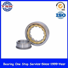 Cheap and Stable Performance Cylindial Roller Bearing (NJ 407)