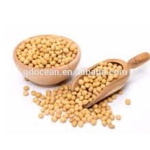 Hochwertige Sojabohne für Öl, Soja, Sojabohnensamen mit angemessenem Preis und schneller Lieferung auf heißem Verkauf !!