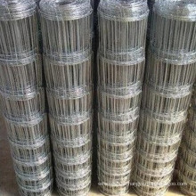 High Quality of Grass Land Fence (factory and supplier) (TYF-001)