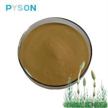Экстракт Equisetum arvense силикон ≥7%