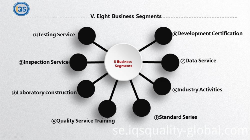 Eight Business Segments