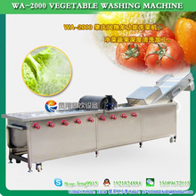 Manufacturer Vegetable and Fruits Washing Machine