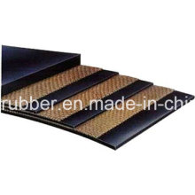 Nylon Conveyor Belt with Greater Speed and Light Weight Made in China