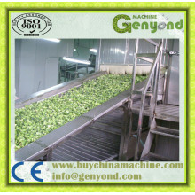 Green Beans Fluidized Quick Freezing Machine