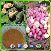 Natural Kola Nut Powder Kola Nut Seed Powder Extract/Kola Nut Seed Powder