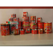 Tomato Paste in Tin with High Quality