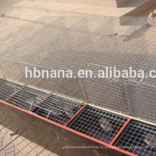 Cage de vis en fer galvanisé à chaud professionnel avec boîte en bois