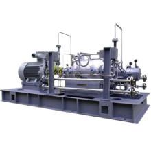 Pompe pétrochimique horizontale multicouche de série Asp5350 (API610 BB5)