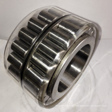 Cylindrical Roller Bearing Double Row Rnn55X88.85X52V for Brevini