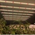 Hydroponic light 320W led tube grow bar