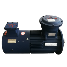 Reversible Induction Motor 4 Pole 230v Kaki Dipasang