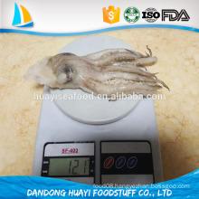 Size 400 -600g frozen Argentina Squid Head