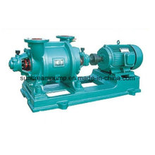 Wasser- oder Flüssigkeitsring-Vakuumpumpe