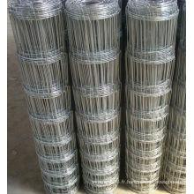 Le plus bas prix galvanisé / clôture de gazon en PVC (manufacture)