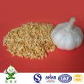Granulés d'ail frits chinois à bas prix
