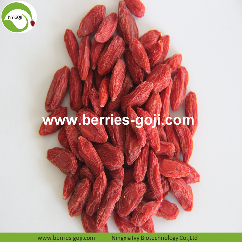 new arrival goji berries