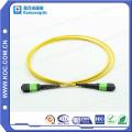 MTP/MPO Singlemode 24cores Fiber Optic Patchcord