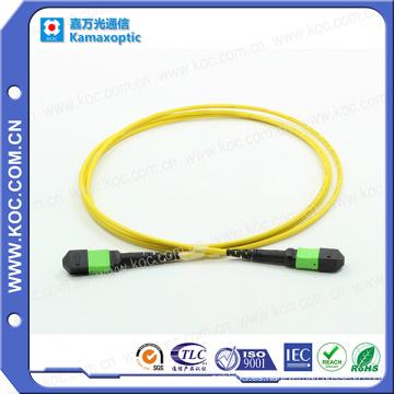 MTP / MPO Singlemode 12cores fibra óptica Patchcord