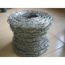 Proveedor de China Galvanized Coated Razor Wire