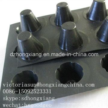 Géocomposite Dimple Drainboard