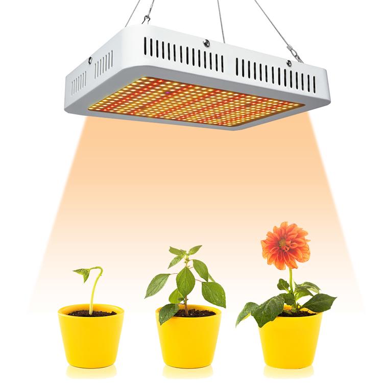 Uv Light For Plants