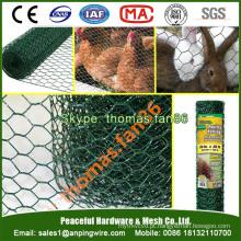 PVC Poultry Netting / malha de frango / malha de arame hexagonal