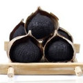 Peeled Solo Black Garlic With FDA Certificate