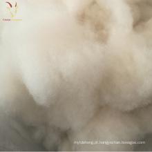 Fibra interna de lãs dos carneiros brancos para a venda