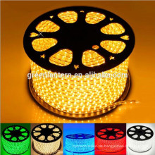 100m 110 volt 220V SMD 5050 led strip light with plug