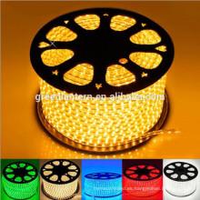 Tira flexible de la prenda impermeable del LED 110V 5050 RGB Tira llevada con el enchufe de la energía 110V control remoto 24key
