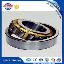 Germany Single Row P5 Chrome Steel Cylindrical Roller Bearing (NN3040/W33)
