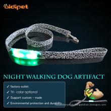 Nylon Webbing Led Light-Up Dog Lead Leash