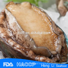 Frozen cooked frozen abalone meat for sale