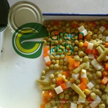 Conserves de légumes en pot de verre/Tin